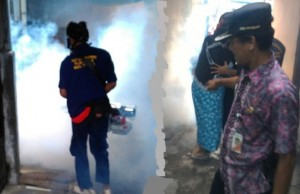 Cegah DBD dan Zika, Kelurahan Pekojan Lakukan Fogging